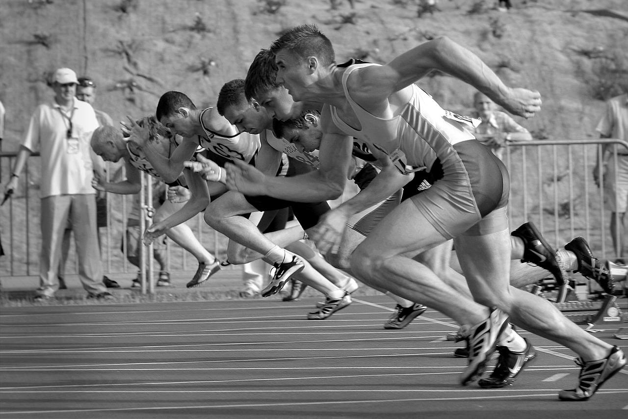 Gammes de course vitesse et bondissement